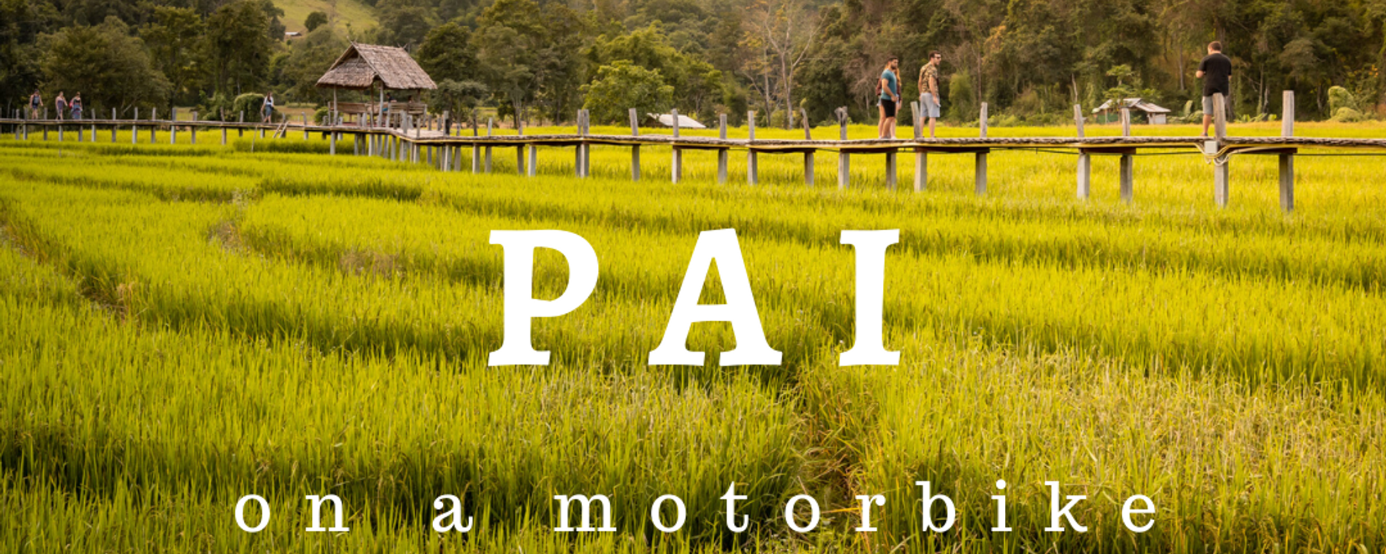 Pai on a Motorbike: Land Splits, Bamboos and Canyons